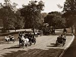 Horse carriage and coach NY central park 1905