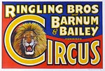 Ringling Bros. and Barnum & Bailey combined Circus, Lion Poster