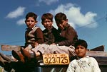 Boys sitting on truck, labor camp Robstown Texas 1942