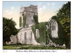 Muckross Abbey, Killarney, Co. Kenny, Ireland