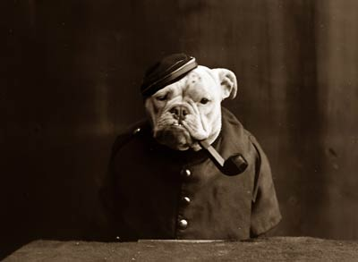 Tommy Atkins Dog in uniform with pipe 1905.