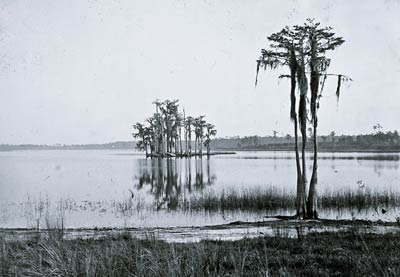 Lake Louise near Seville Florida 19th century