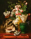 Still Life with Flowers, Shells, a Shark's Head, and Petrificati